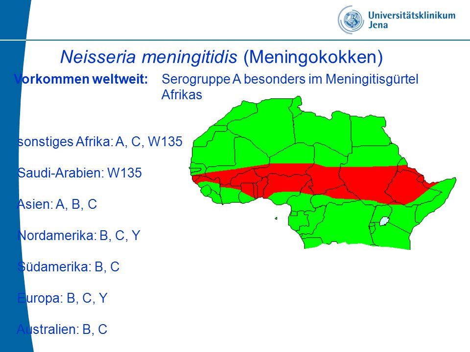 Vorkommen weltweit: Serogruppe A besonders im Meningitisgürtel Afrikas sonstiges Afrika: A, C, W135 Saudi-Arabien: W135 Asien: A, B, C Nordamerika: B, C, Y Südamerika: B, C Europa: B, C, Y Australien: B, C Neisseria meningitidis (Meningokokken)