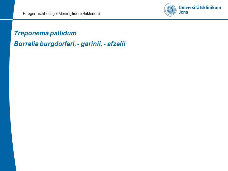 Treponema pallidum Borrelia burgdorferi, - garinii, - afzelii Erreger nicht-eitriger Meningitiden (Bakterien)