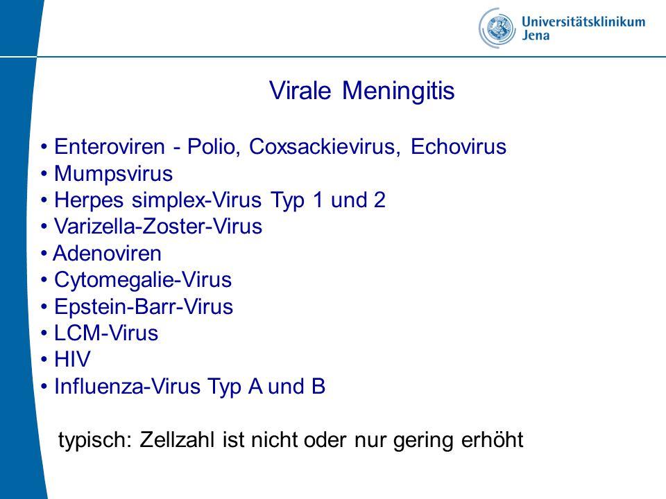 Virale Meningitis Enteroviren - Polio, Coxsackievirus, Echovirus Mumpsvirus Herpes simplex-Virus Typ 1 und 2 Varizella-Zoster-Virus Adenoviren Cytomegalie-Virus Epstein-Barr-Virus LCM-Virus HIV Influenza-Virus Typ A und B typisch: Zellzahl ist nicht oder nur gering erhöht