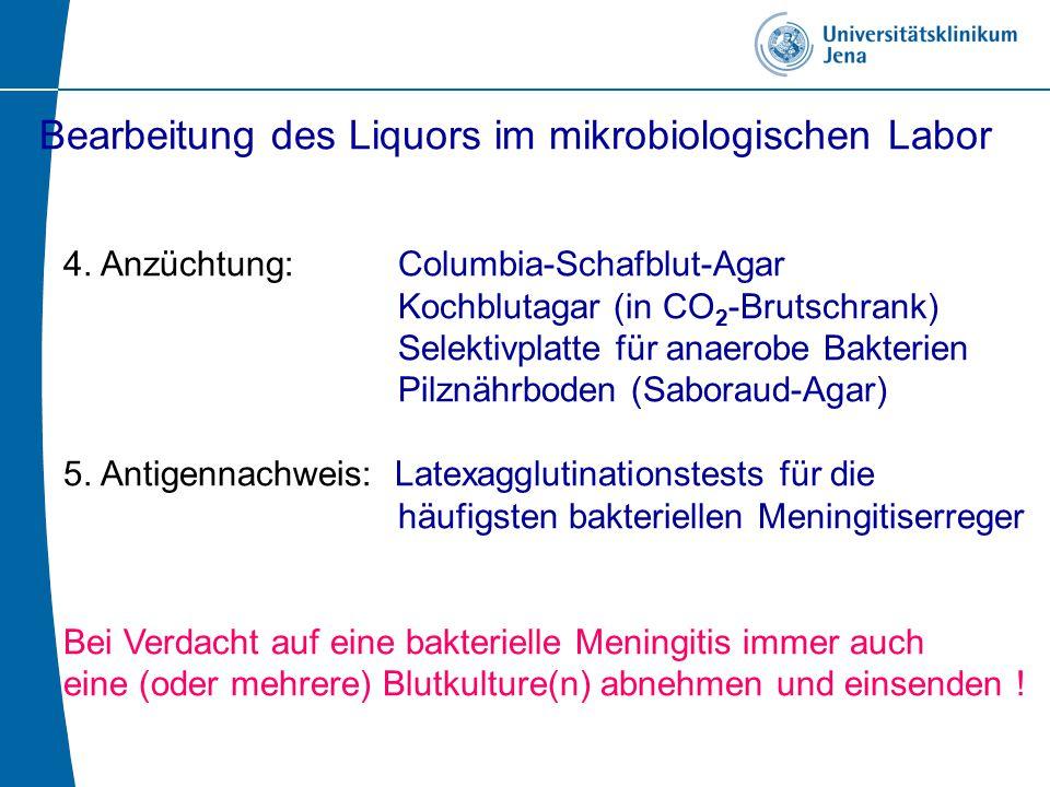 Liquor bei Listerien-Meningitis nicht eitrige Meningitis Immunsuppression- Hämatologisch/onkologische Erkrankungen - solide Tumoren - Diabetes mellitus - Alkoholiker