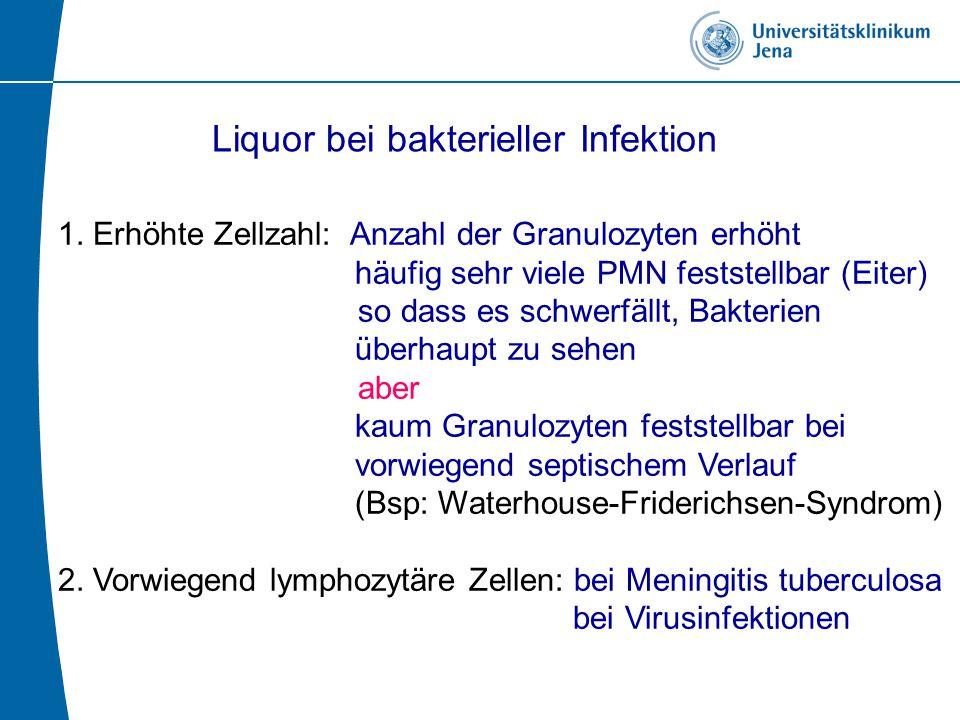 Liquor bei bakterieller Infektion 1.