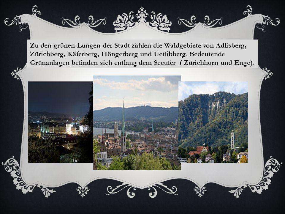 Zu den grünen Lungen der Stadt zählen die Waldgebiete von Adlisberg, Zürichberg, Käferberg, Höngerberg und Uetlibberg.