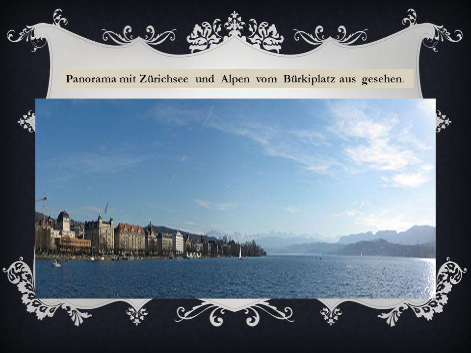 Panorama mit Zürichsee und Alpen vom Bürkiplatz aus gesehen.