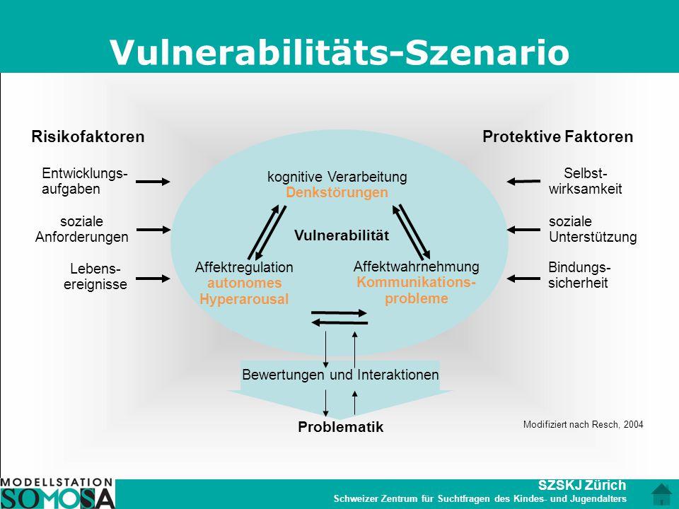 SZSKJ Zürich Schweizer Zentrum für Suchtfragen des Kindes- und Jugendalters Vulnerabilitäts-Szenario Vulnerabilität Affektregulation autonomes Hyperar