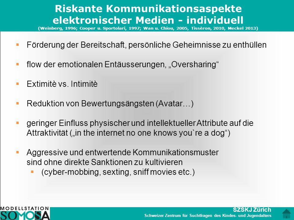 SZSKJ Zürich Schweizer Zentrum für Suchtfragen des Kindes- und Jugendalters Riskante Kommunikationsaspekte elektronischer Medien - individuell (Weinbe