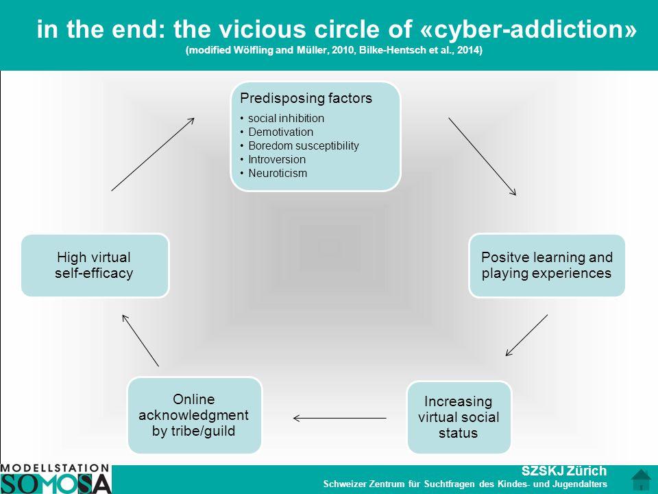 SZSKJ Zürich Schweizer Zentrum für Suchtfragen des Kindes- und Jugendalters in the end: the vicious circle of «cyber-addiction» (modified Wölfling and