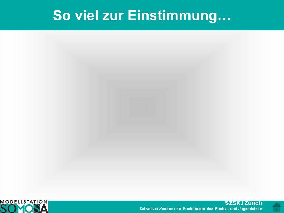 SZSKJ Zürich Schweizer Zentrum für Suchtfragen des Kindes- und Jugendalters So viel zur Einstimmung…