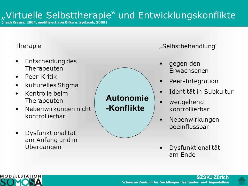 """SZSKJ Zürich Schweizer Zentrum für Suchtfragen des Kindes- und Jugendalters """"Virtuelle Selbsttherapie"""" und Entwicklungskonflikte (nach Krausz, 2004, m"""