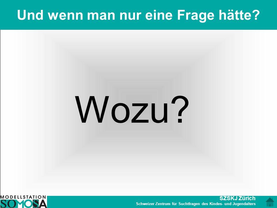 SZSKJ Zürich Schweizer Zentrum für Suchtfragen des Kindes- und Jugendalters Und wenn man nur eine Frage hätte? Wozu?
