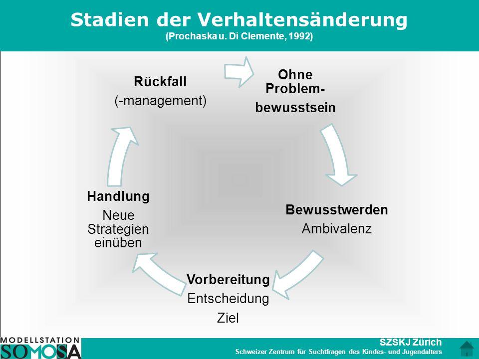 SZSKJ Zürich Schweizer Zentrum für Suchtfragen des Kindes- und Jugendalters Stadien der Verhaltensänderung (Prochaska u. Di Clemente, 1992) Ohne Probl