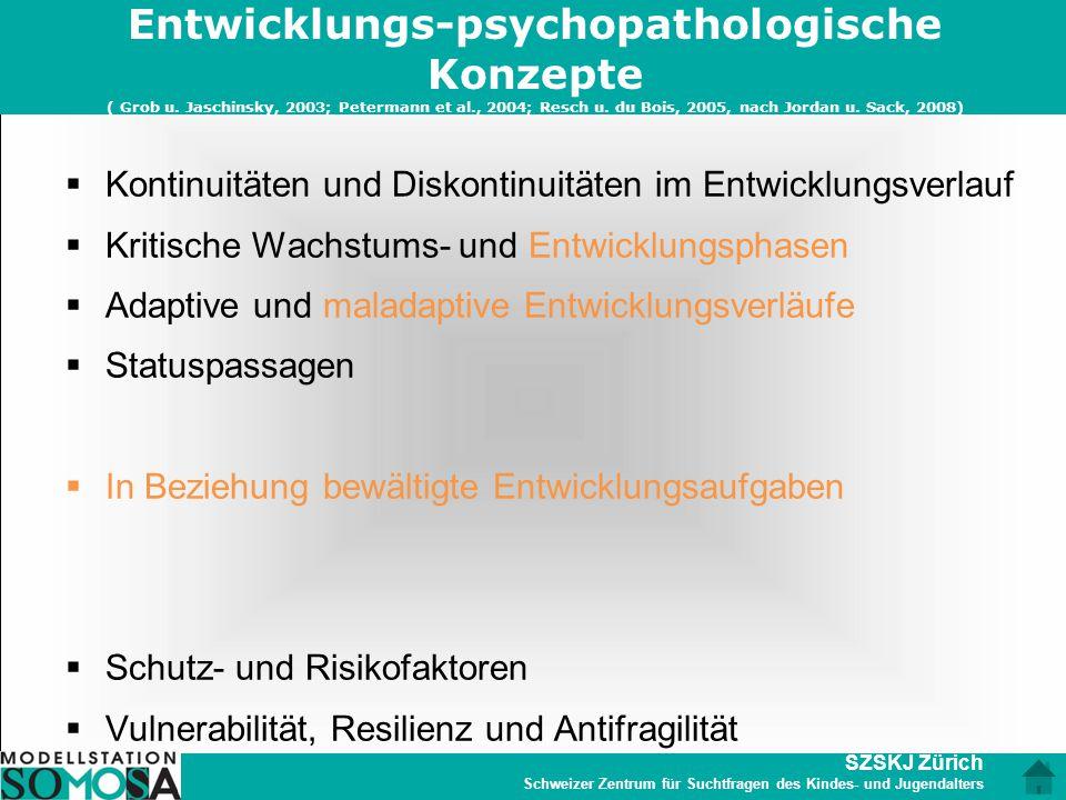 SZSKJ Zürich Schweizer Zentrum für Suchtfragen des Kindes- und Jugendalters Entwicklungs-psychopathologische Konzepte ( Grob u. Jaschinsky, 2003; Pete