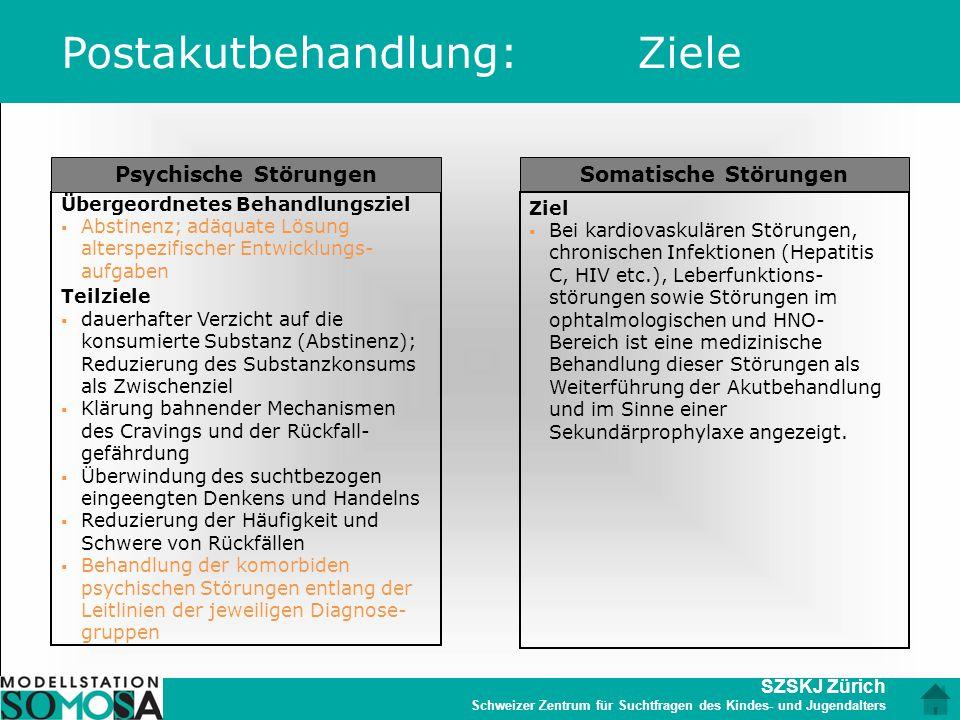 SZSKJ Zürich Schweizer Zentrum für Suchtfragen des Kindes- und Jugendalters Psychische Störungen Übergeordnetes Behandlungsziel  Abstinenz; adäquate