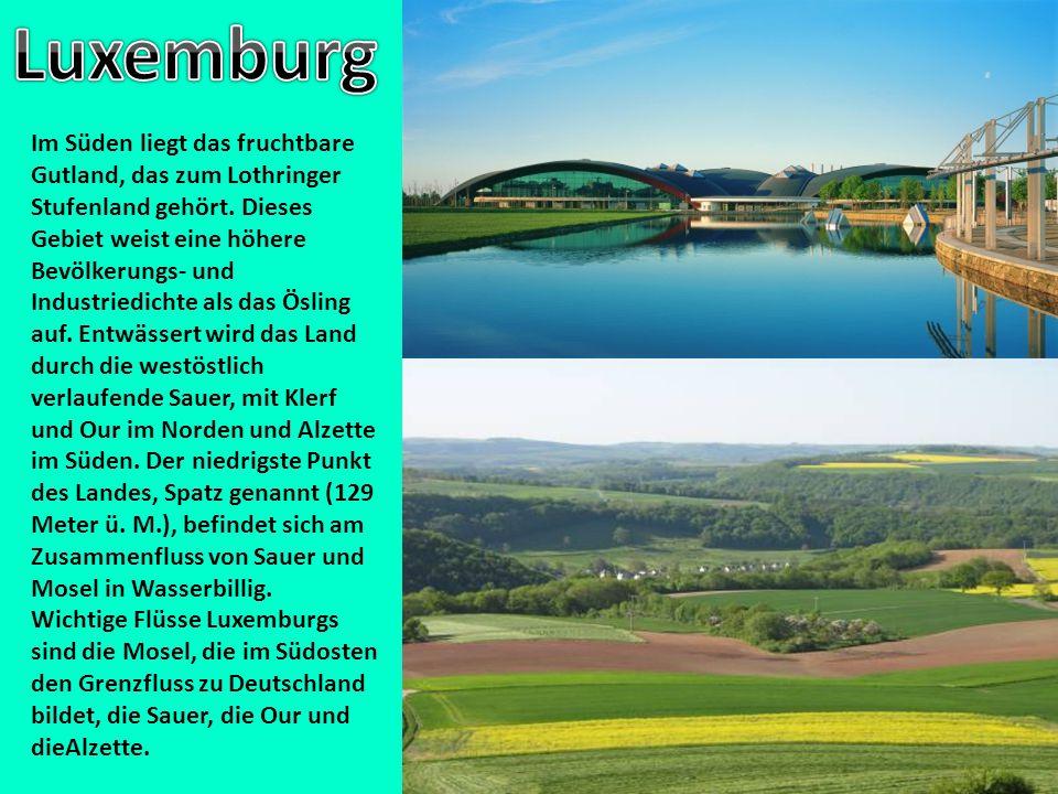 Im Süden liegt das fruchtbare Gutland, das zum Lothringer Stufenland gehört. Dieses Gebiet weist eine höhere Bevölkerungs- und Industriedichte als das