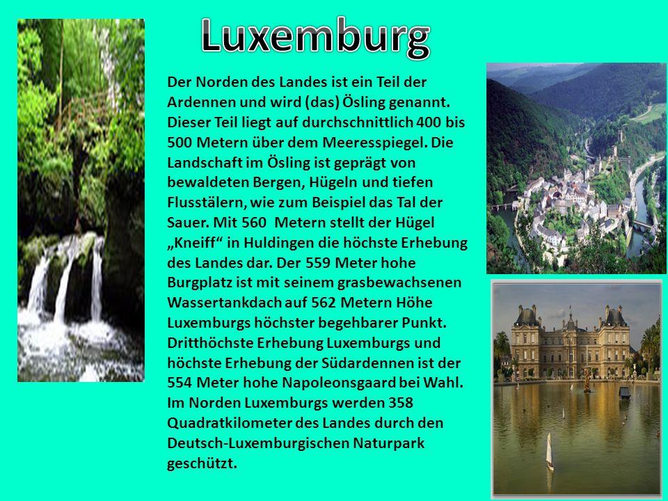 Der Norden des Landes ist ein Teil der Ardennen und wird (das) Ösling genannt. Dieser Teil liegt auf durchschnittlich 400 bis 500 Metern über dem Meer