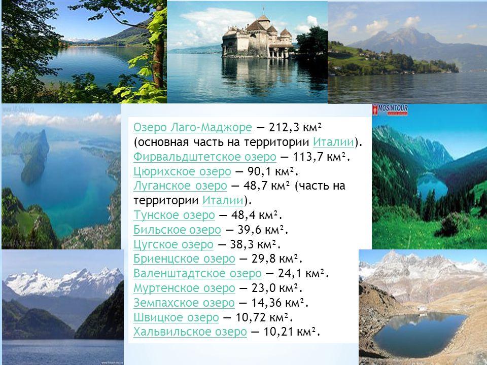 Озеро Лаго-МаджореОзеро Лаго-Маджоре — 212,3 км² (основная часть на территории Италии).Италии Фирвальдштетское озероФирвальдштетское озеро — 113,7 км².