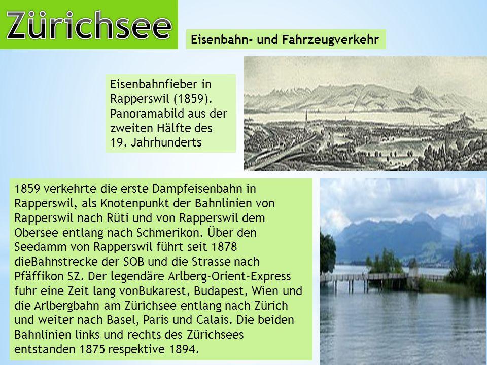 Eisenbahn- und Fahrzeugverkehr Eisenbahnfieber in Rapperswil (1859).