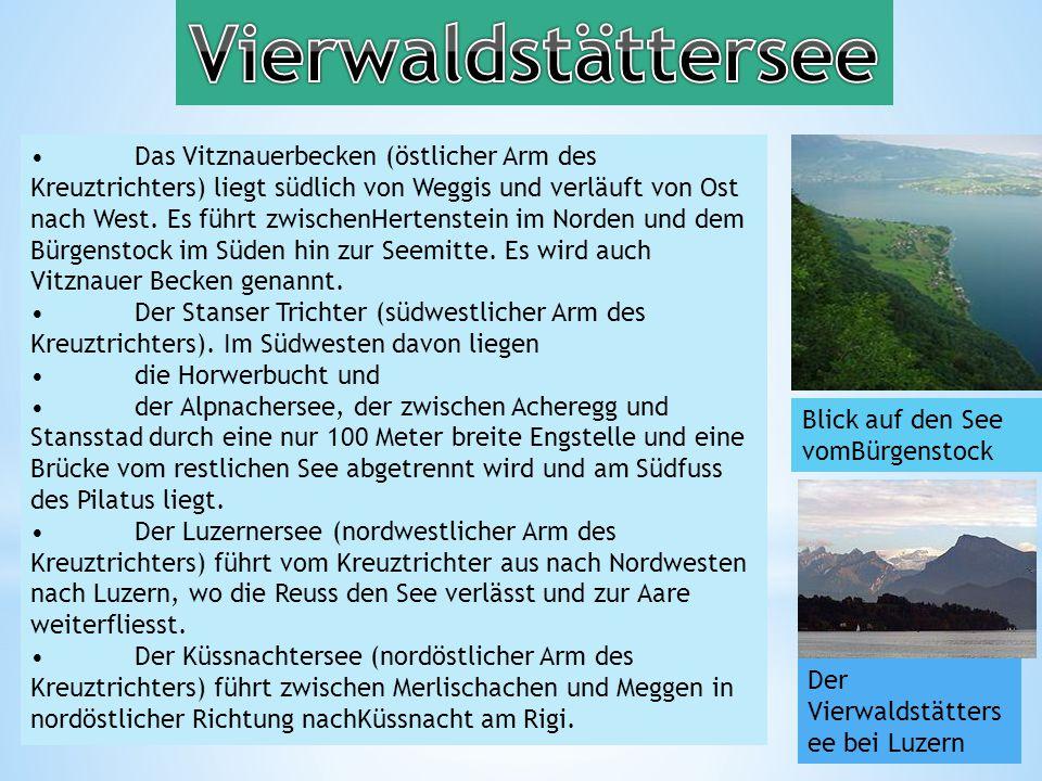 Das Vitznauerbecken (östlicher Arm des Kreuztrichters) liegt südlich von Weggis und verläuft von Ost nach West.
