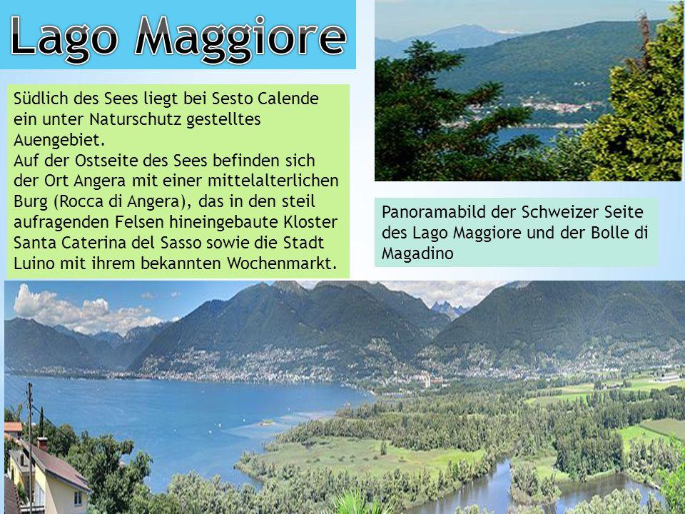 Südlich des Sees liegt bei Sesto Calende ein unter Naturschutz gestelltes Auengebiet.