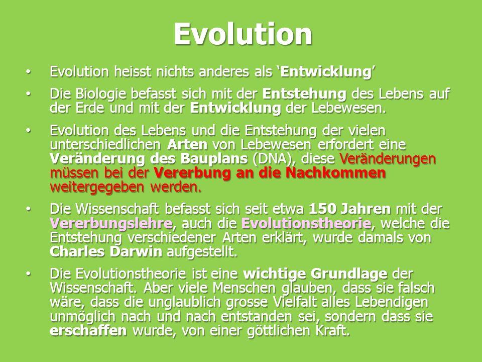 Evolution Evolution heisst nichts anderes als 'Entwicklung' Evolution heisst nichts anderes als 'Entwicklung' Die Biologie befasst sich mit der Entste
