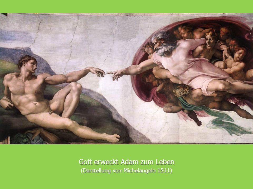 Gott erweckt Adam zum Leben (Darstellung von Michelangelo 1511)