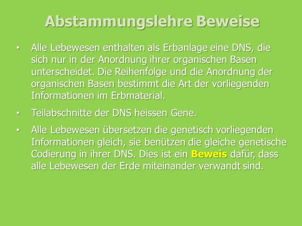 Abstammungslehre Beweise Alle Lebewesen enthalten als Erbanlage eine DNS, die sich nur in der Anordnung ihrer organischen Basen unterscheidet. Die Rei
