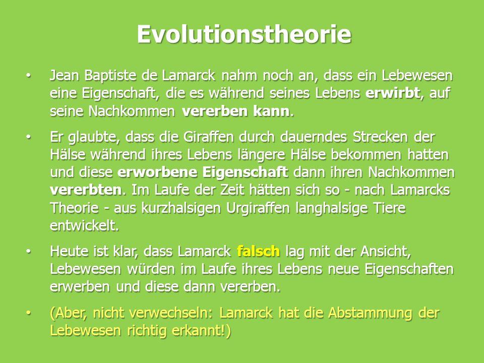 Evolutionstheorie Jean Baptiste de Lamarck nahm noch an, dass ein Lebewesen eine Eigenschaft, die es während seines Lebens erwirbt, auf seine Nachkomm