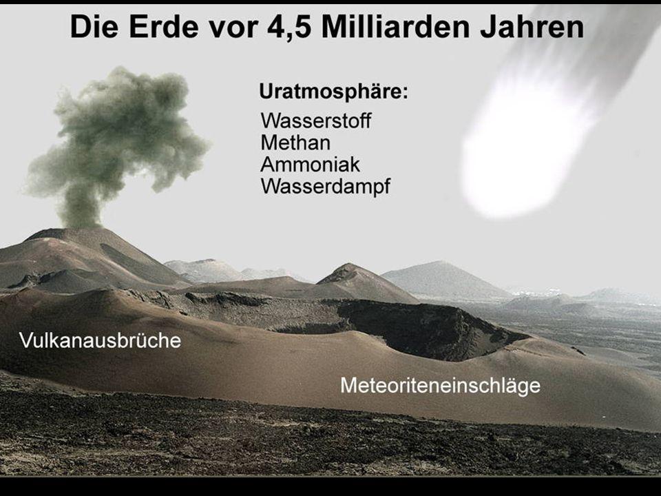 Evolution des Pferdes Im Laufe der Zeit breiteten sich auf der Erde die Steppenlandschaften immer mehr aus.