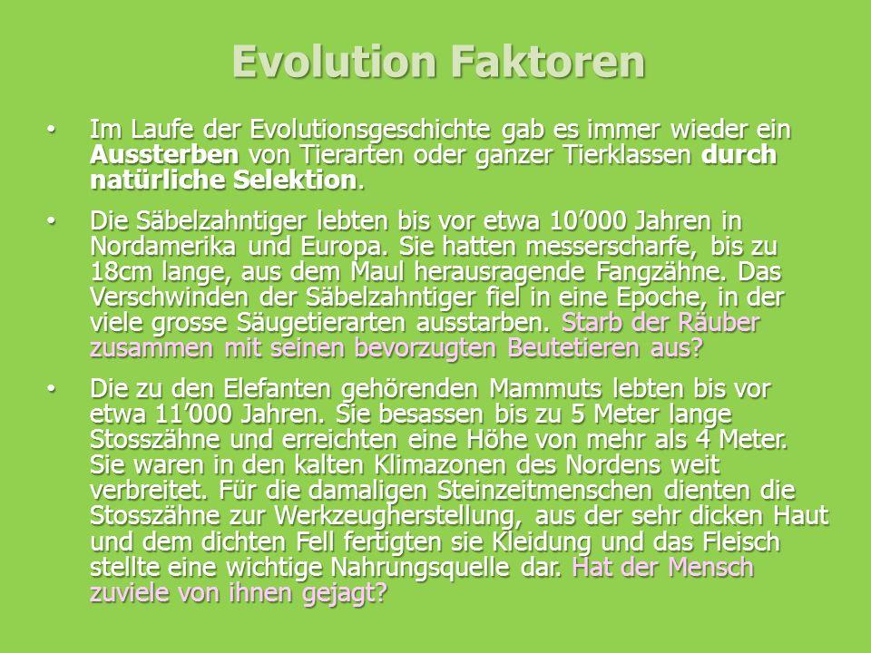 Evolution Faktoren Im Laufe der Evolutionsgeschichte gab es immer wieder ein Aussterben von Tierarten oder ganzer Tierklassen durch natürliche Selekti