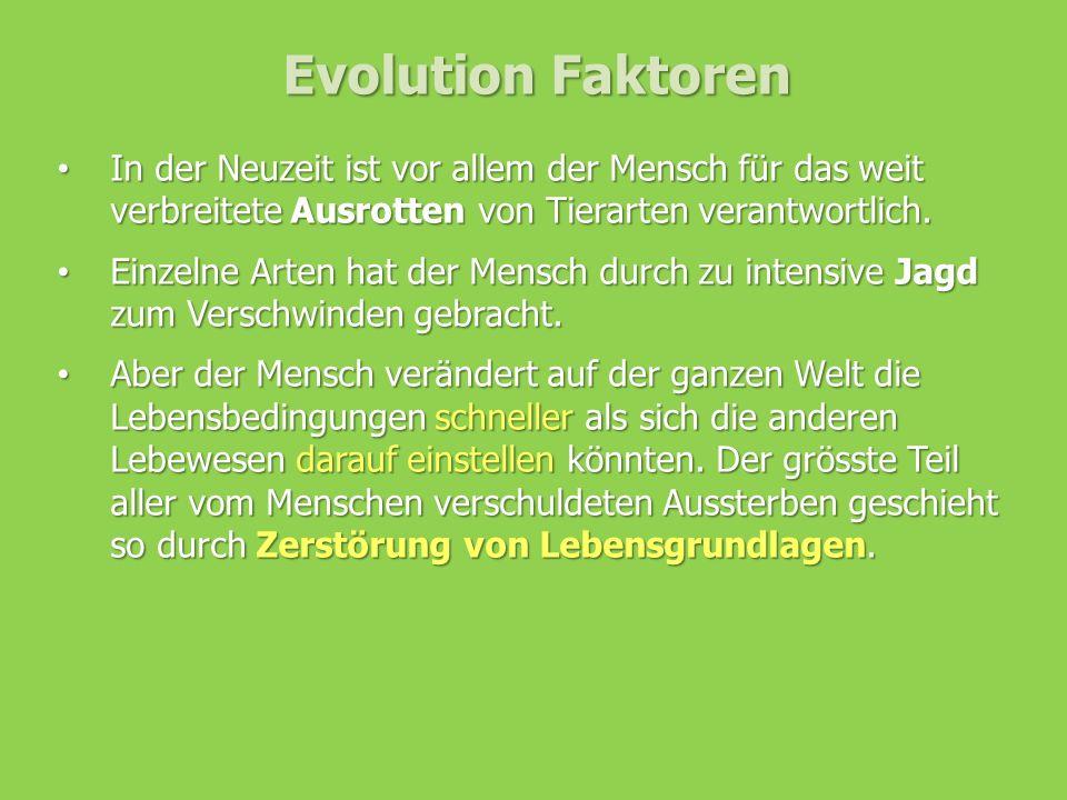 Evolution Faktoren In der Neuzeit ist vor allem der Mensch für das weit verbreitete Ausrotten von Tierarten verantwortlich. In der Neuzeit ist vor all