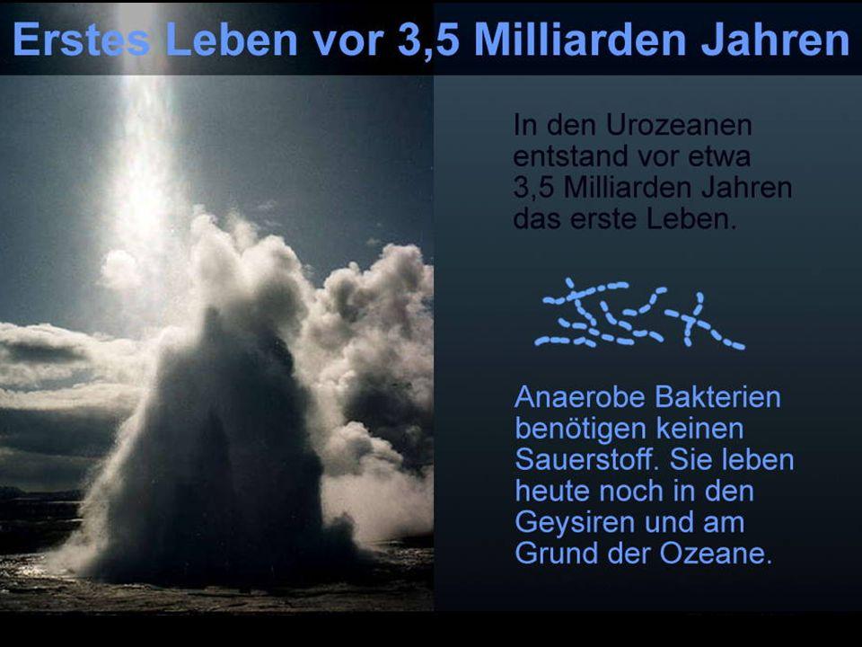 Herkunft des Sauerstoffs Sauerstoff gab es schon von Anfang an auf der Erde, nur nicht in reiner Form.