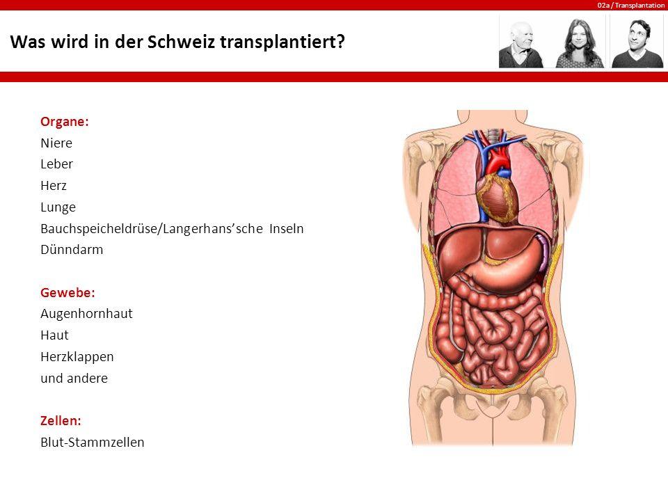 02a / Transplantation Was wird in der Schweiz transplantiert? Organe: Niere Leber Herz Lunge Bauchspeicheldrüse/Langerhans'sche Inseln Dünndarm Gewebe