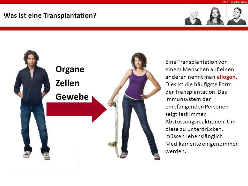 02a / Transplantation Was ist eine Transplantation? Organe Zellen Gewebe Eine Transplantation von einem Menschen auf einen anderen nennt man allogen.