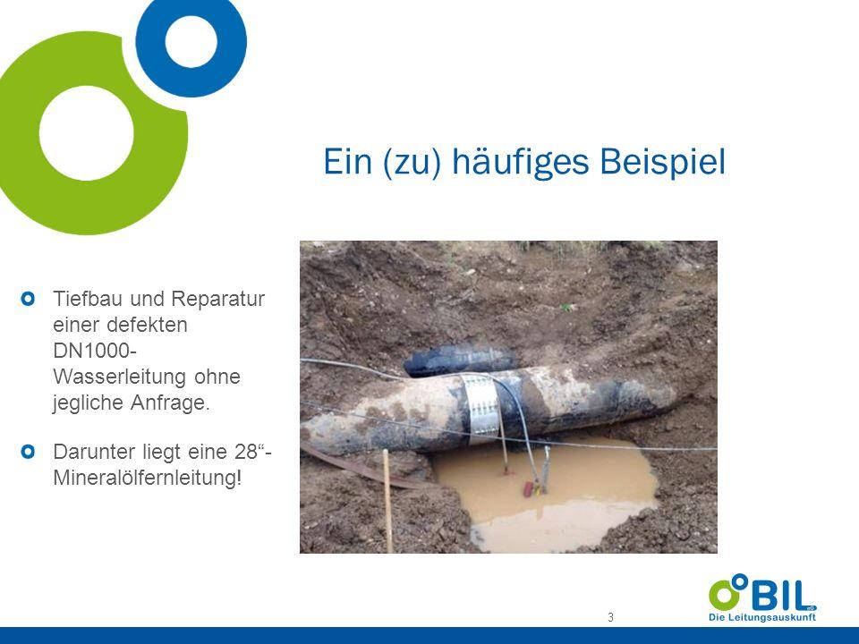 BIL - Gründung 4 Gründung 15.