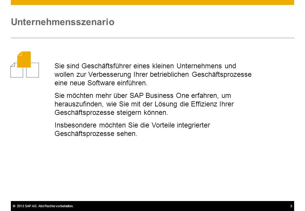 ©2013 SAP AG. Alle Rechte vorbehalten.3 Sie sind Geschäftsführer eines kleinen Unternehmens und wollen zur Verbesserung Ihrer betrieblichen Geschäftsp