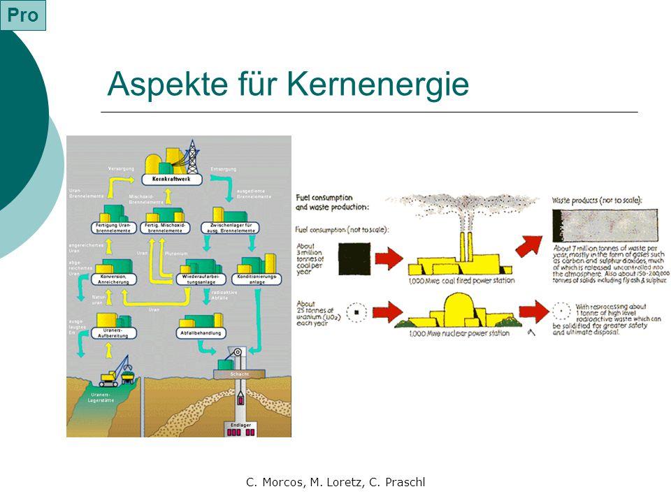 C. Morcos, M. Loretz, C. Praschl Aspekte für Kernenergie Pro