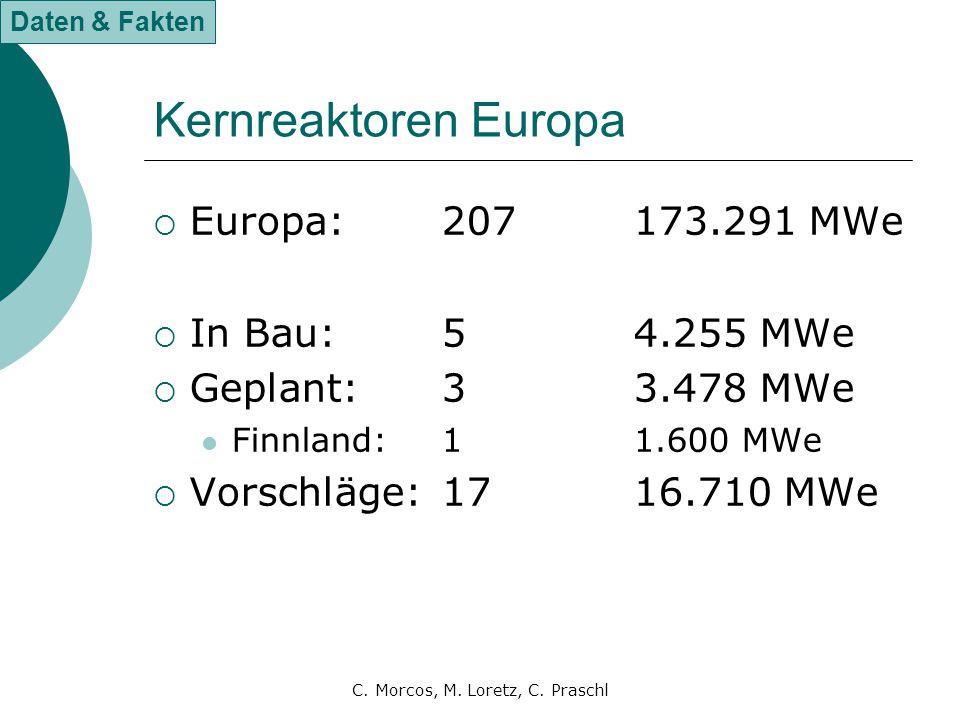 C. Morcos, M. Loretz, C. Praschl Kernreaktoren Europa  Europa:207173.291 MWe  In Bau:54.255 MWe  Geplant:33.478 MWe Finnland:11.600 MWe  Vorschläg