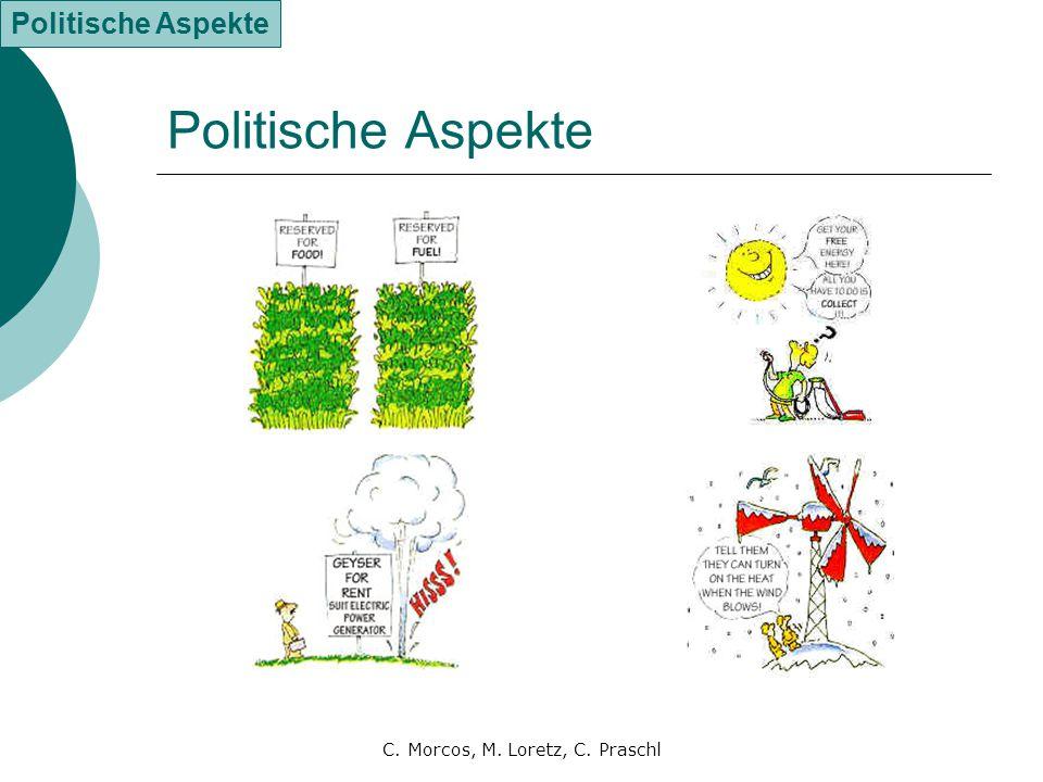 C. Morcos, M. Loretz, C. Praschl Politische Aspekte
