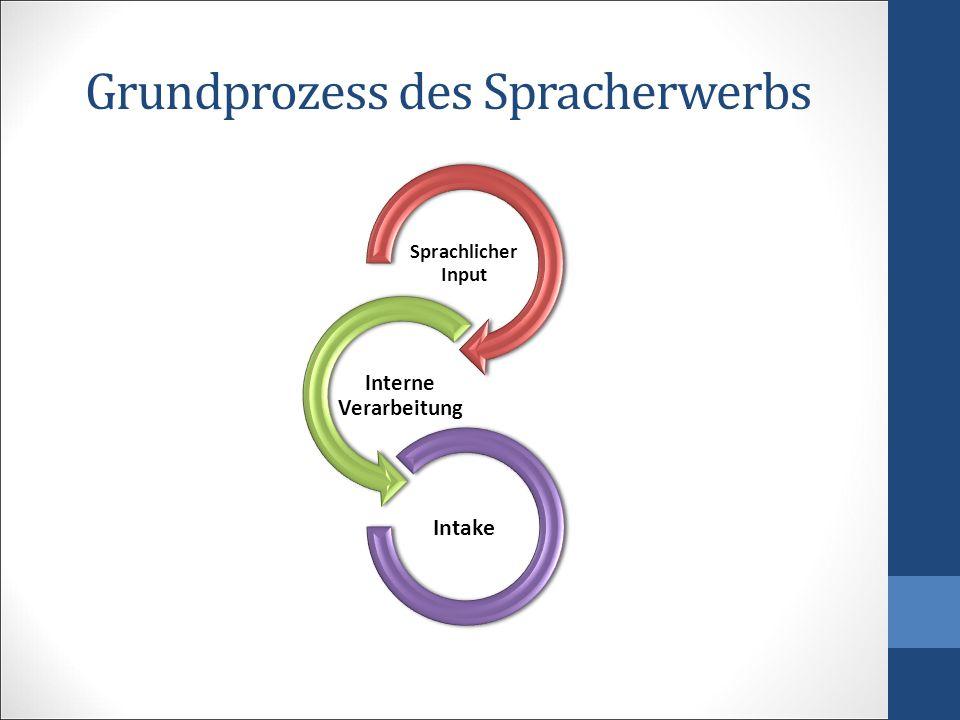 Grundprozess des Spracherwerbs Sprachlicher Input Interne Verarbeitung Intake