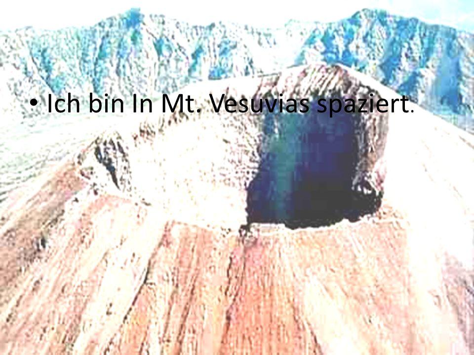Ich bin In Mt. Vesuvias spaziert.