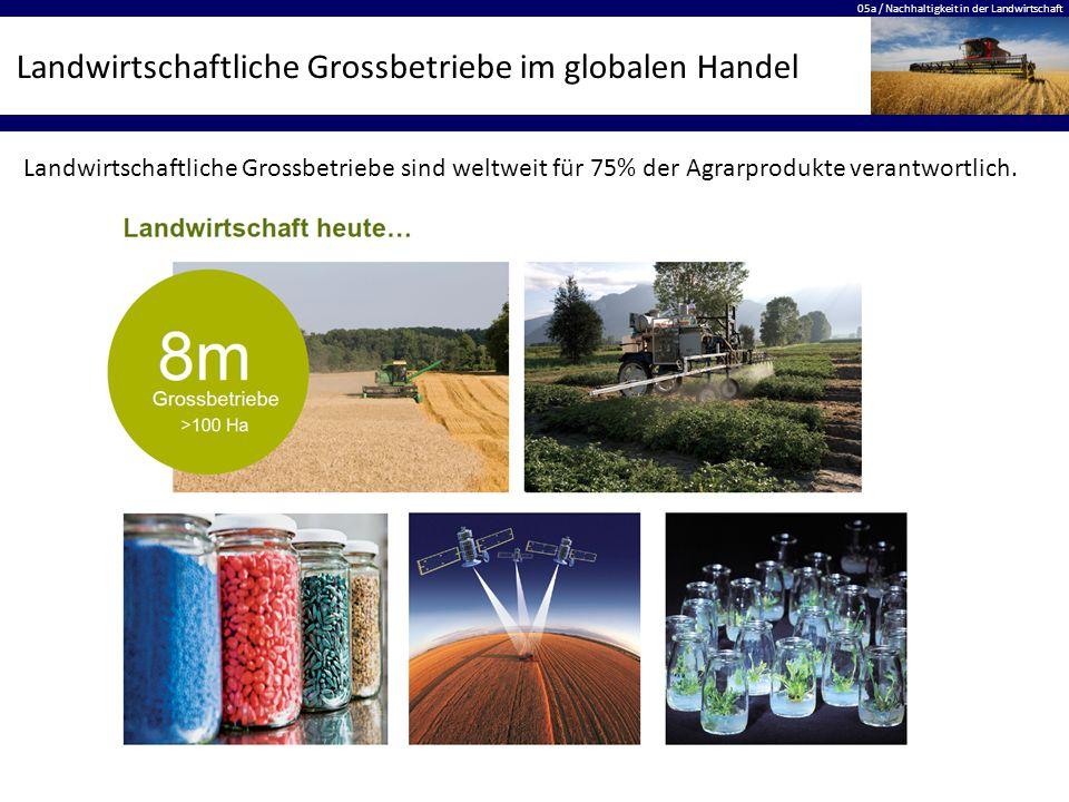 05a / Nachhaltigkeit in der Landwirtschaft Landwirtschaftliche Grossbetriebe im globalen Handel Landwirtschaftliche Grossbetriebe sind weltweit für 75% der Agrarprodukte verantwortlich.