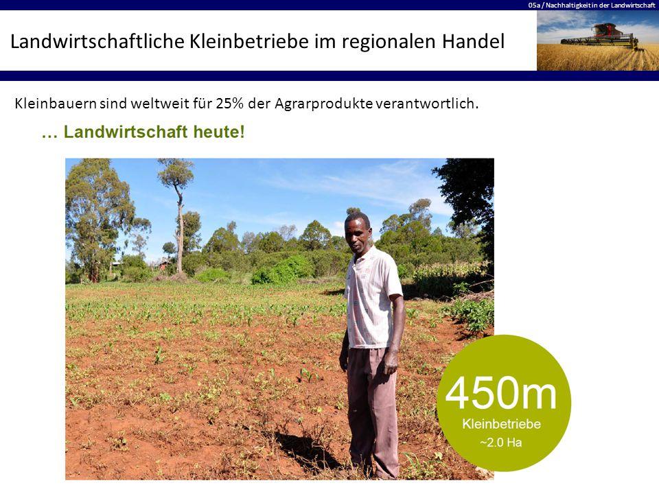 05a / Nachhaltigkeit in der Landwirtschaft Landwirtschaftliche Kleinbetriebe im regionalen Handel Kleinbauern sind weltweit für 25% der Agrarprodukte verantwortlich.