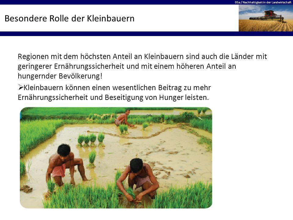 05a / Nachhaltigkeit in der Landwirtschaft Besondere Rolle der Kleinbauern Regionen mit dem höchsten Anteil an Kleinbauern sind auch die Länder mit geringerer Ernährungssicherheit und mit einem höheren Anteil an hungernder Bevölkerung.