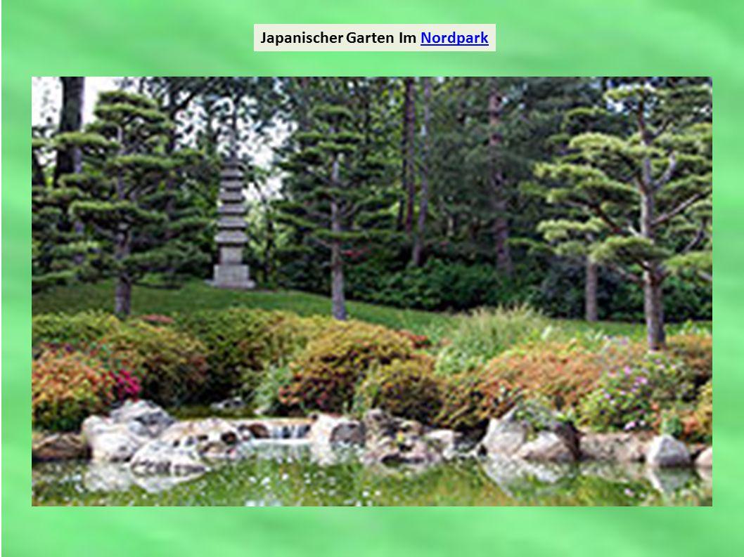 Japanischer Garten Im NordparkNordpark