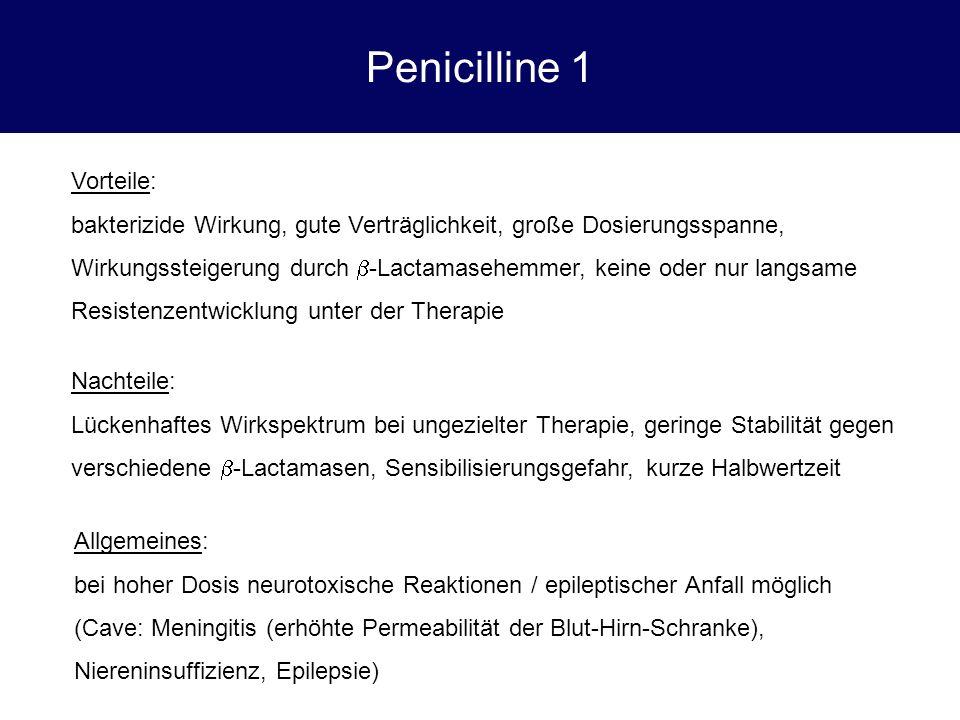 Penicilline 1 Vorteile: bakterizide Wirkung, gute Verträglichkeit, große Dosierungsspanne, Wirkungssteigerung durch  -Lactamasehemmer, keine oder nur