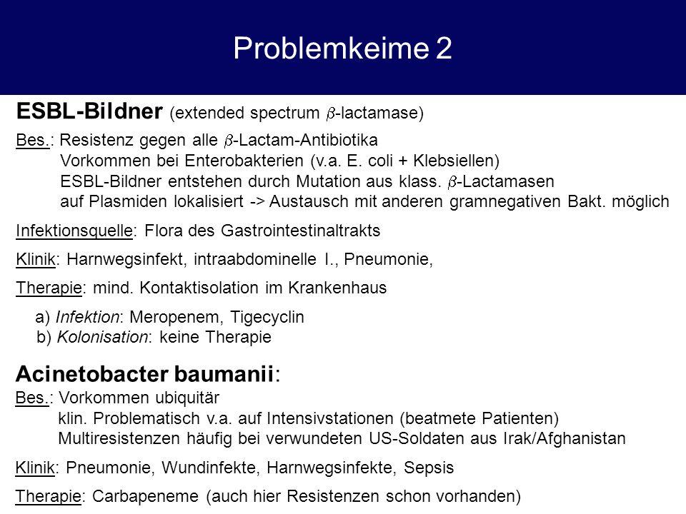 Problemkeime 2 ESBL-Bildner (extended spectrum  -lactamase) Bes.: Resistenz gegen alle  -Lactam-Antibiotika Vorkommen bei Enterobakterien (v.a. E. c