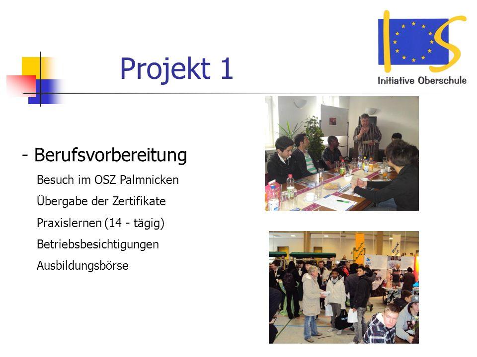 Projekt 1 - Berufsvorbereitung Besuch im OSZ Palmnicken Übergabe der Zertifikate Praxislernen (14 - tägig) Betriebsbesichtigungen Ausbildungsbörse