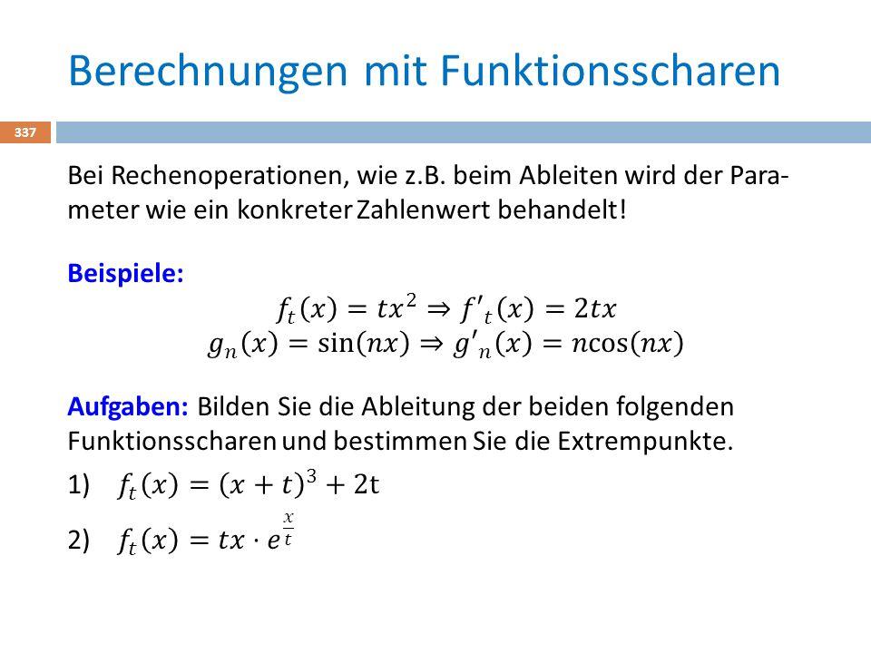 Berechnungen mit Funktionsscharen 337