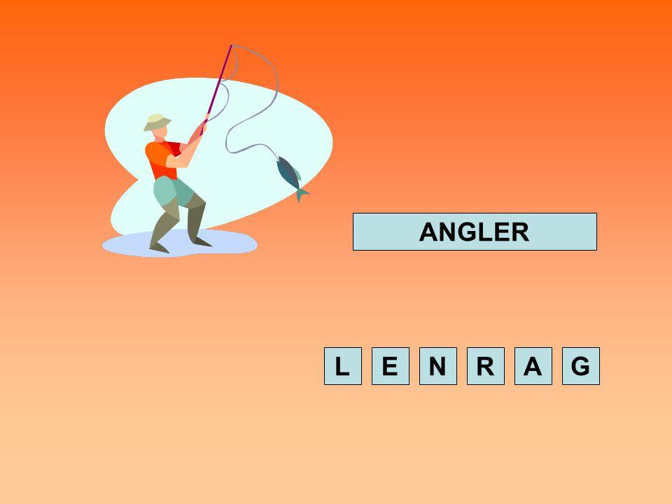 GESCHWINDIGKEITSTEST Setze die gesuchten Wörter zusammen, indem du in der korrekten Reihenfolge auf die Buchstaben klickst.