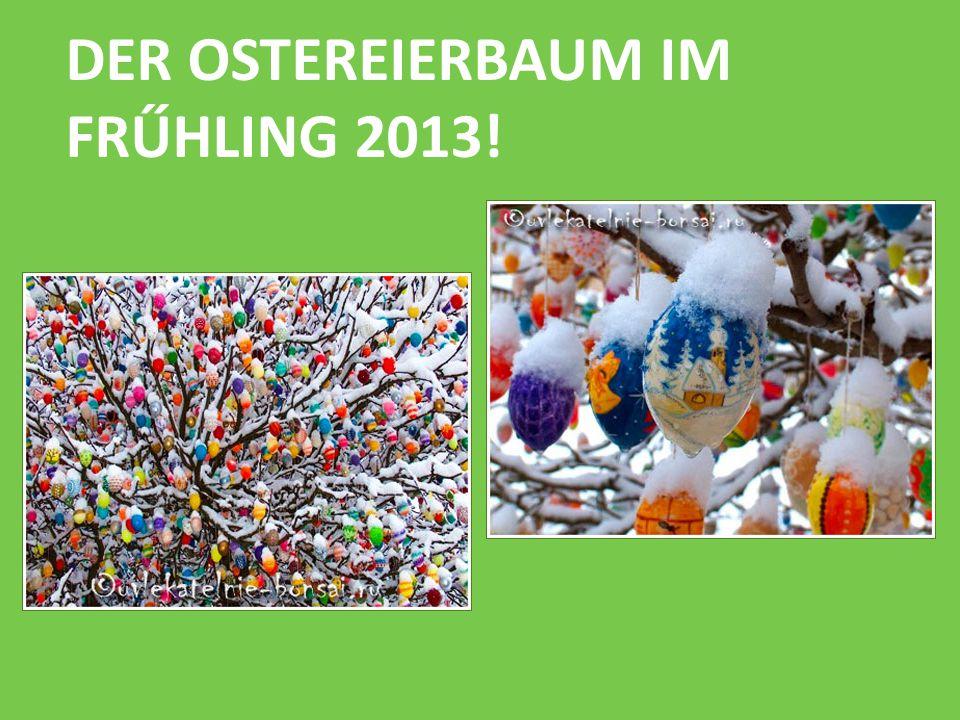 DER OSTEREIERBAUM IM FRŰHLING 2013!