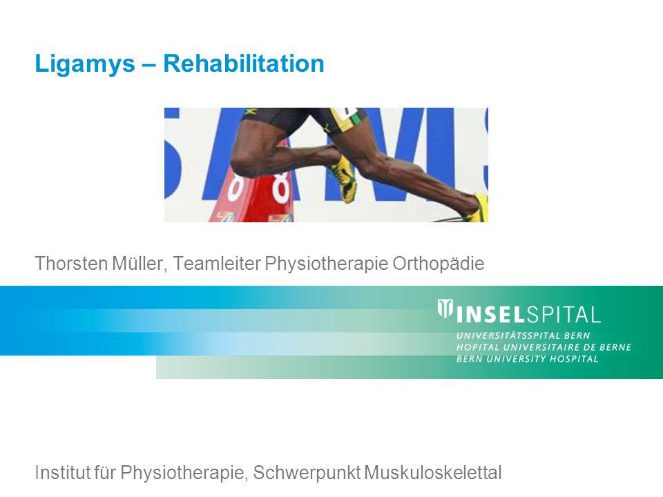 Ligamys – Rehabilitation12 Institut für Physiotherapie, Inselspital Herzlichen Dank für Ihre Aufmerksamkeit!